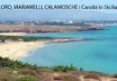 Nel cuore di Vendicari, la provincia di Siracusa con ELORO, MARIANELLI e CALAMOSCHE ha le spiagge più belle della Sicilia.